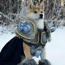 Lich King Arthas