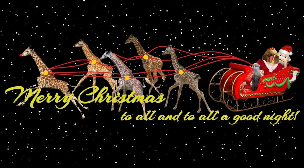 Merry_Christmas.thumb.jpg.369f306ee50b7d7a5cd843580ef6fb07.jpg